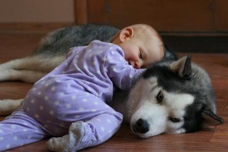 A perinatális szaktanácsadó válaszol 2. rész:  Baba alvás